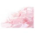 Розовый цвет (травы)
