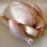 Цыпленок мясной для жарки