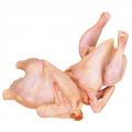 Курица: Тушка суповая